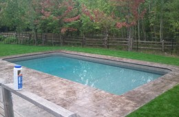 Backyard Pool – Sophisticated 6