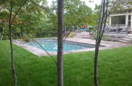 Backyard Pool – Sophisticated 3