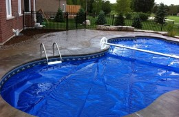 Backyard Pool – With Cover #1