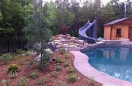 Backyard Pool – With Slide #2